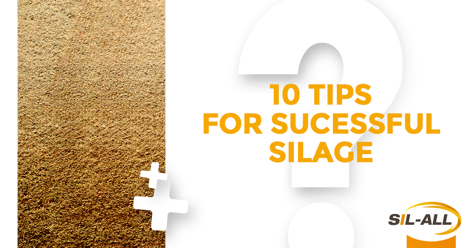 10 tips for successful silage