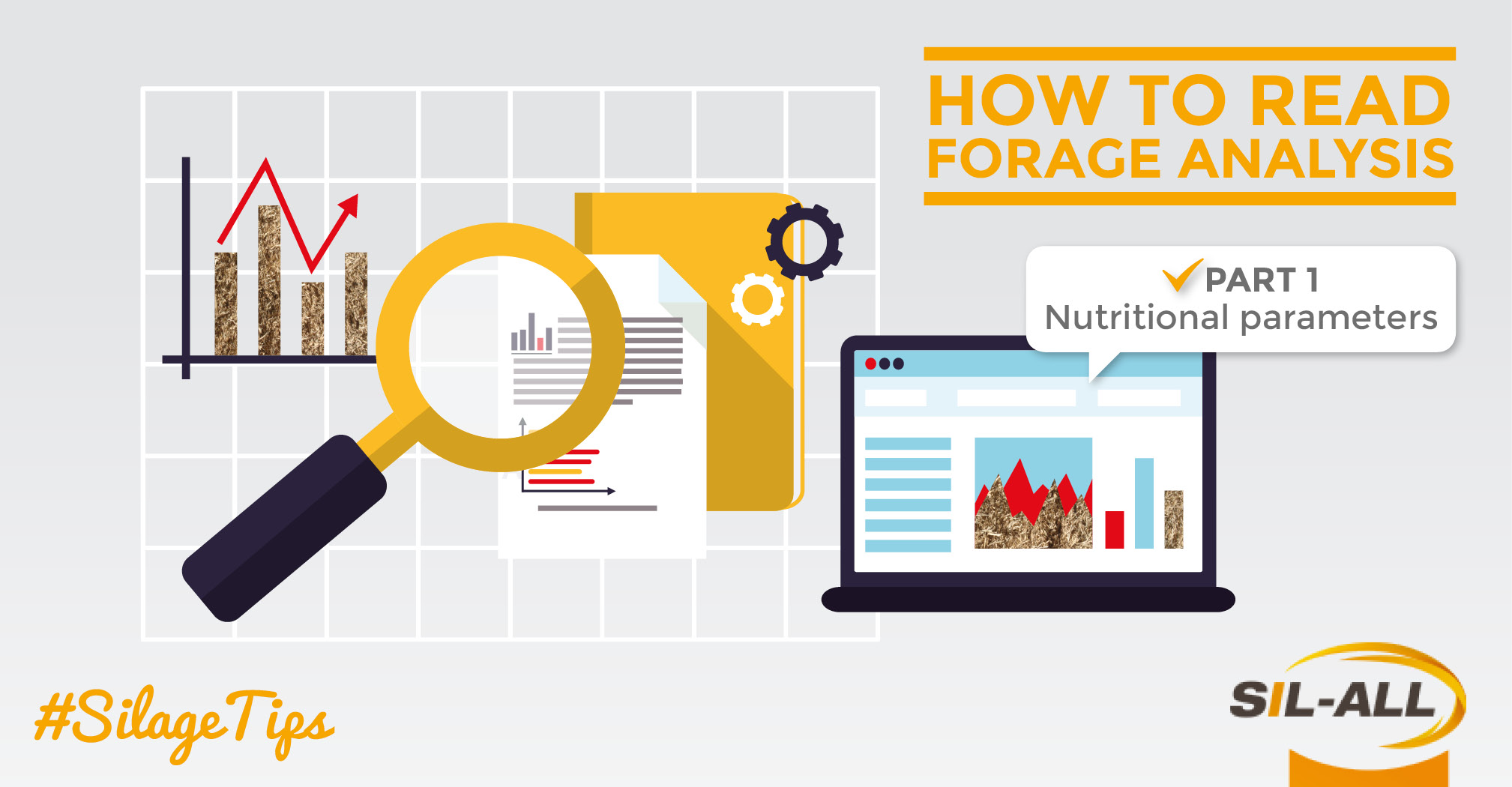 How to read a forage analysis / PART 1: Nutritional parameters
